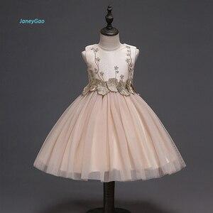 Image 1 - JaneyGao 2019 אופנה פרח ילדה שמלות למסיבת חתונה אלגנטי שמפניה שמלת טול שמלה עם רקמת תחרה אפליקציות