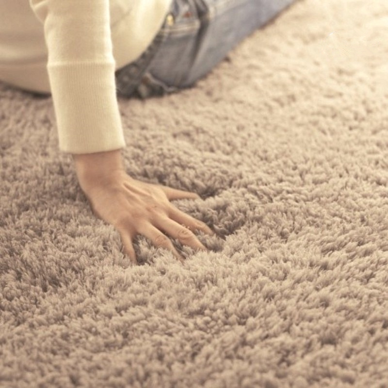 Oval Floormat Carpet Long Hair Shaggy Mat Soft Area Rug