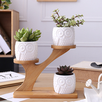 1 Set Creative succulent ceramic small flower pot treetop bamboo frame combination potted porcelain (without plants) AP10151513