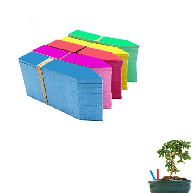100*20mm/piante Etichette di Plastica Molti colori Palo-tipo di scuola materna v