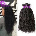 8A Cabelo Virgem Malaio Crespo Encaracolado Tecer Cabelo Humano 3 Pacotes Ofertas Malásia Cabelo Encaracolado Não Transformados Afro Kinky Curly Hair