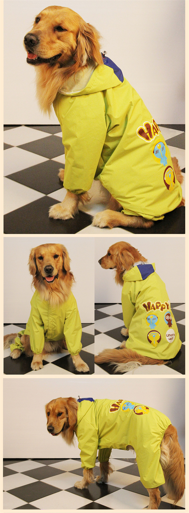 dog raincoat (9)