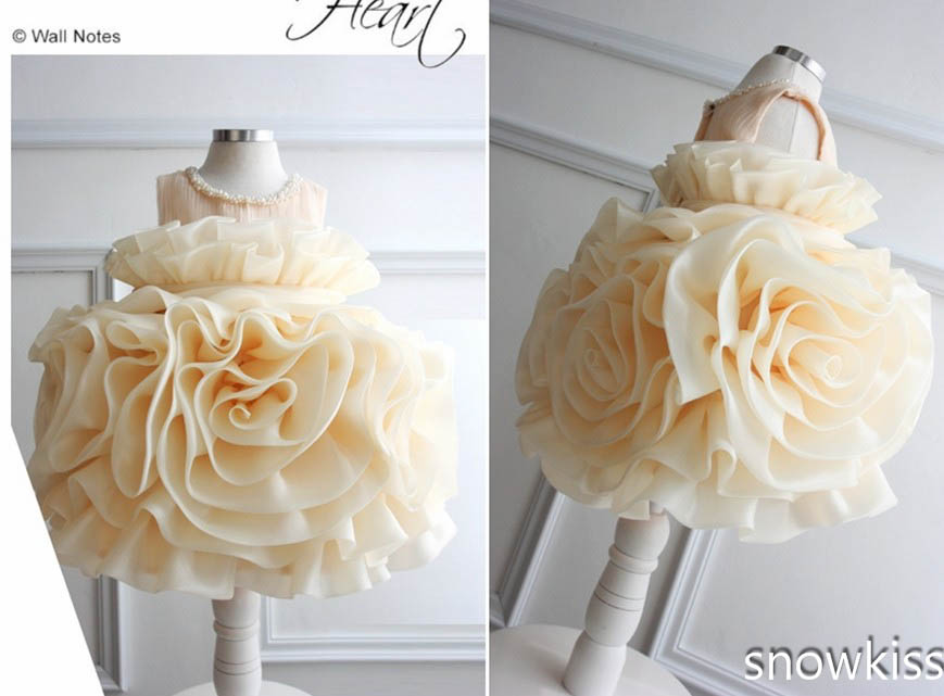 Champagne Organza Flower Girl Dress puffy Ruffles ball gown Baby infant Tutu 1st Birthday party gown