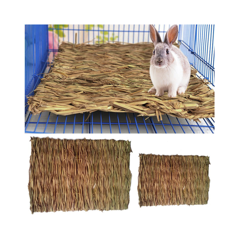 Petacc 11''x8'' Grass Hamster Bed Woven Small Animal Mat Safe Pet Chew Toy For Hamster, Rabbit, Hedgehog And Guinea Pig