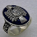 2016 Promotion Real Classic Jewelry Anillos Jewelry The Vampire Diaries Damon Vintage Natural Lapis ring 10 Antique Style