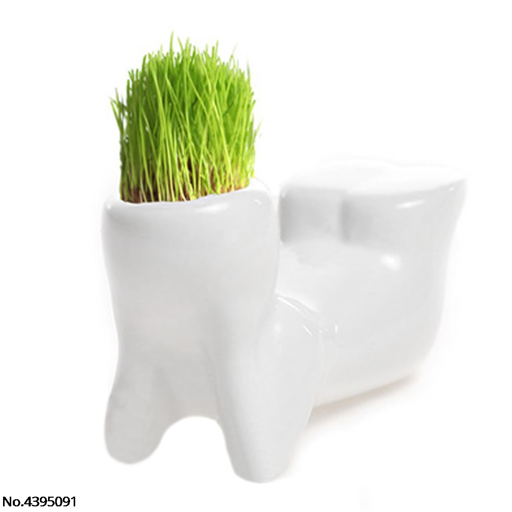 Купить с кэшбэком New Novel Bonsai Head Grass Doll Hair White Lazy Man Rely Plant Garden DIY Mini 3 Shapes Choice