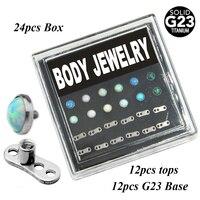 G23 Титан Опал Кожные Якорь Топ-Голова с Кожных Базы Пирсинг Jewelry Box Set 24 шт.