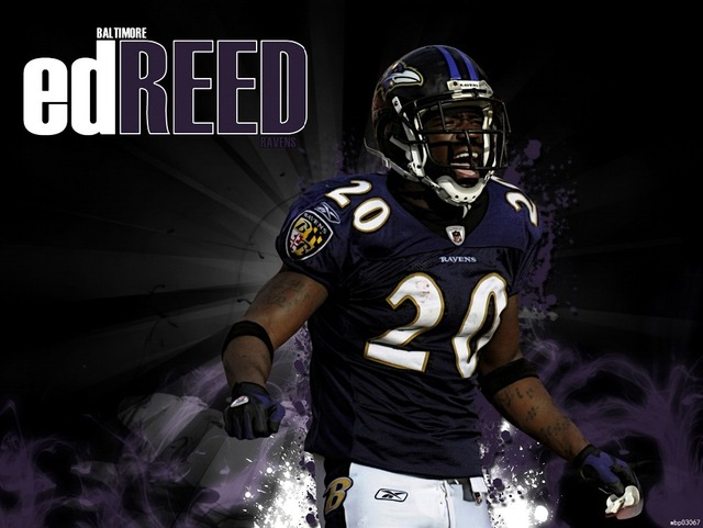 Ed Reed Baltimore Ravens Football Sport Art Huge Print Poster TXHOME  supplier
