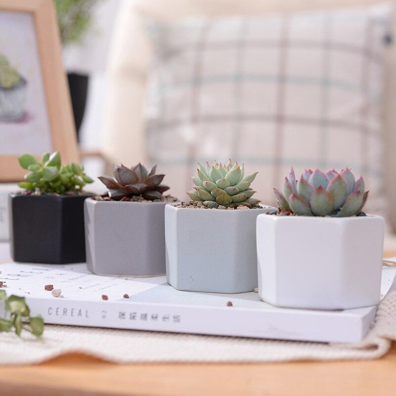 Hexagon Mini Flower Vase Camila Home Decor