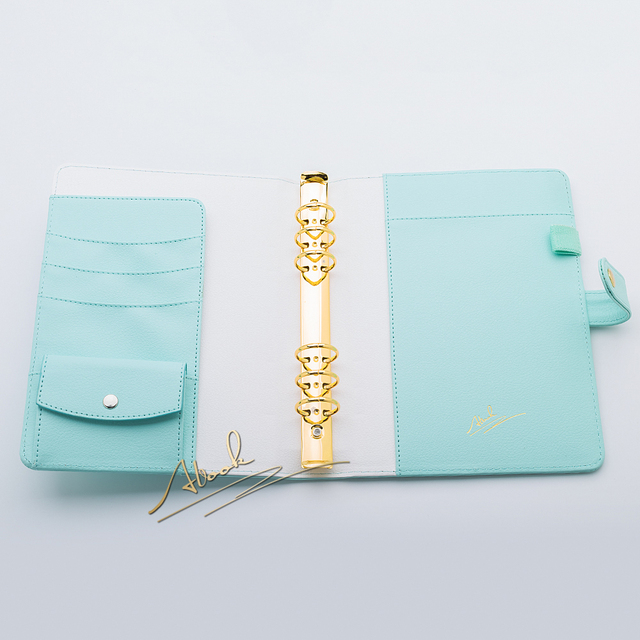 Free shipping 2018 new A5 mint color gold ring planners agenda notebooks journal kawaii DIY stationery wholesale price hot sale