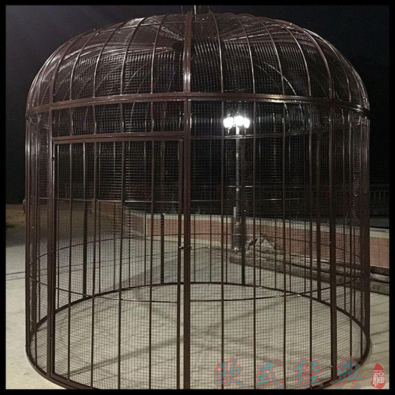 ironbirdcage-S0291
