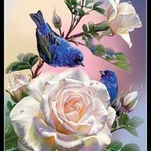 Nakış Sayılan Çapraz Dikiş Kitleri Iğne-El Sanatları 14 ct DMC DIY sanat Renk El Yapımı Dekor-Gül ve Mavi kuşlar