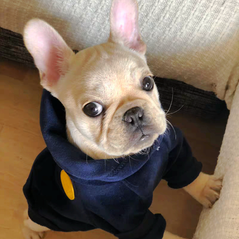 [MPK Dog Wear] New Dog Clothes  Hoodies For Winter, Suitable For French Bulldogs, Pugs, 3 Colors Available