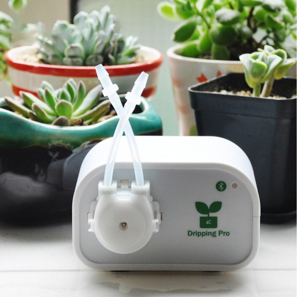 Système d'irrigation d'arrosage automatique de jardin contrôle Intelligent Bluetooth plantes d'intérieur dispositif d'irrigation goutte à goutte minuterie de pompe à eau