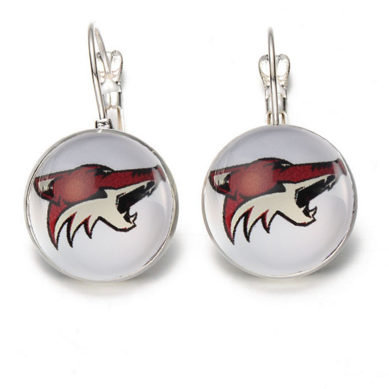 Arizona Coyotes Jewelry Stud/Pendant Earrings Fans Hockey Charm Glass Earing
