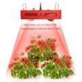Затемняемый полный спектр LED Grow Light 800 Вт Citizen Bridgelux COB Крытый Гидропоника теплицы завод все стадии растущего освещения