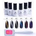 BORN PRETTY 5Ml Cat Eye Gel Soak Off UV Gel Polish With Magnet Board 1 Bottle Nail Art Manicure Tools