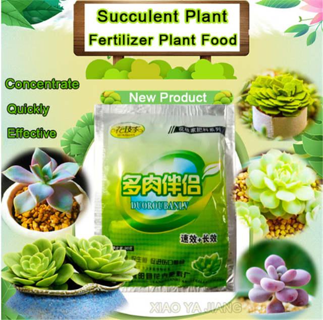 1pcs Fleshy Succulents Special Fertilizer Companion Anti Root Rot