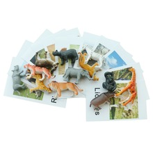 Montessori Infant Toys Animal Cards Language Materials Preschool Educational Learning For Children YI3044H