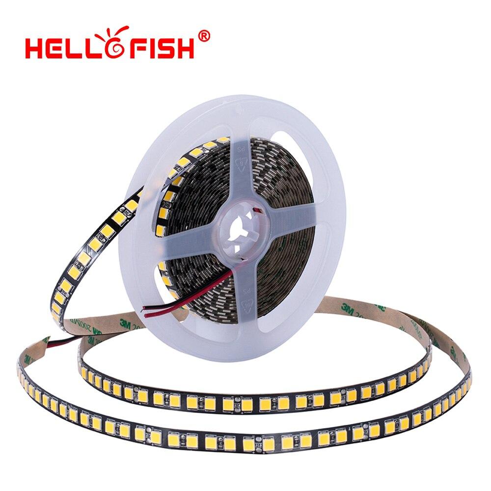 24 v 5 m 120 fita LEVOU Alto brilho 5054 tira conduzida flexível luz stripeambient backlight