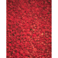 Custom washable wrinkle free print 3D red roses flowers photo studio background for wedding newbron backdrop photography S 2547A
