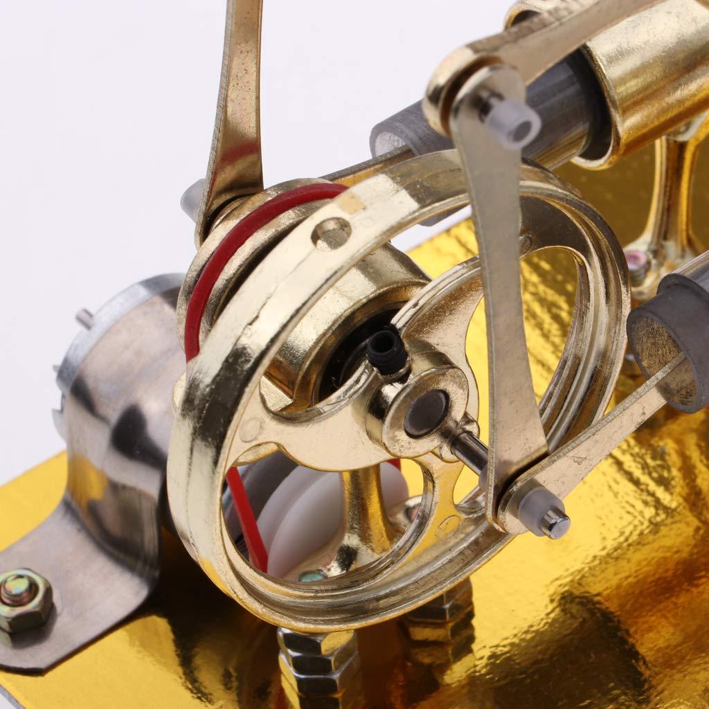 Air chaud 2 cylindres Stirling moteur générateur de vapeur modèle physique expérience Science apprentissage jouets éducatifs cadeau pour les enfants - 6