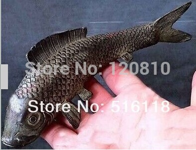 Bronze Fish Bronze Statue QQ06