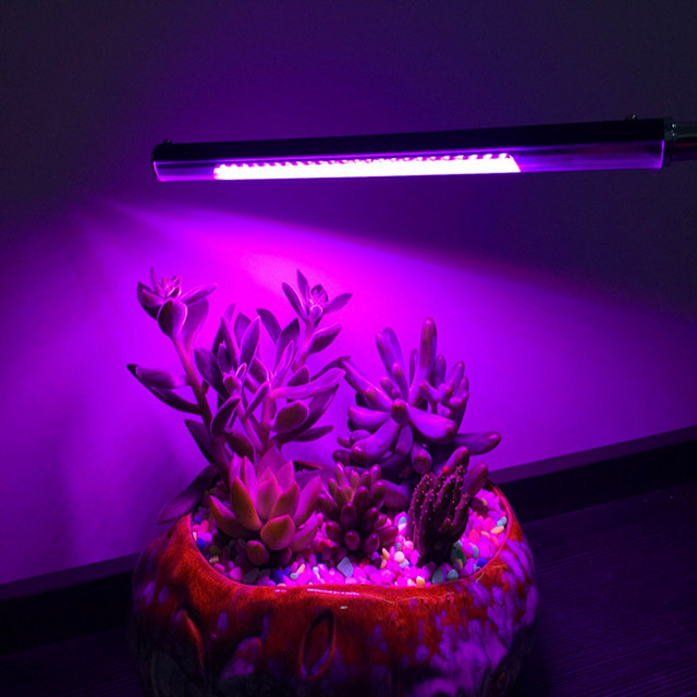 Led Grow Light Plant Lamp Red U0026 Blue Light Dimmable Clip Desk Grow Lights  Lamp Bulb