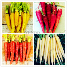 Buy  species to choose,for home garden planting  online