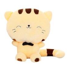 Katten Plush Doll BB ris och grönsaker roll fabriken direkt företags mascot anpassade rekryteringsmedel av presenter till barn