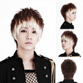 Free Shipping !!! Handsome boys wig New Korean Fashion Sexy short Men Cosplay wigs