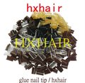 Freeshipping - 1000pcs Glue Nail Tip Keratin Nail Tip / Mixed Colors / Black D-Brown Brown L-Brown Blonde Transparent