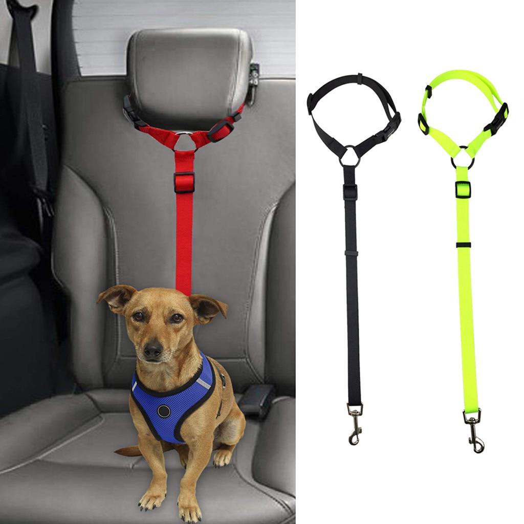 dog seat belt with dog