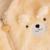 Rosa Bebé Recién Nacido Chaqueta Con Capucha Poncho Del Bebé Que Lleva Cremallera Cardigan Moleton infantil Bebé Suéter Lindo Con el Oído Outwear 50D023