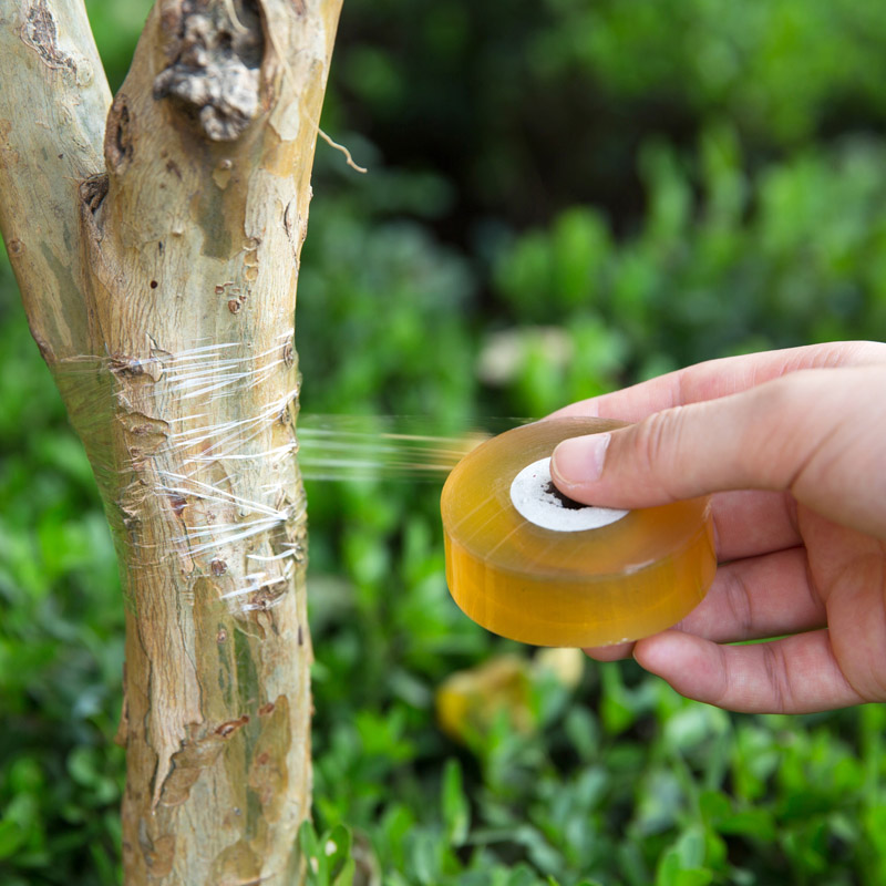 1 Roll Fruit Tree Seedlings Gardening Bind Belt Pvc Self-adhesive Transparent Stretch Film Grafting For Home Agriculture Tools