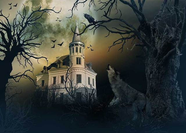 kidniu halloween background photography terror wolf photo props castle vinyl studio screen backdrops 7x5ft or 5x3ft
