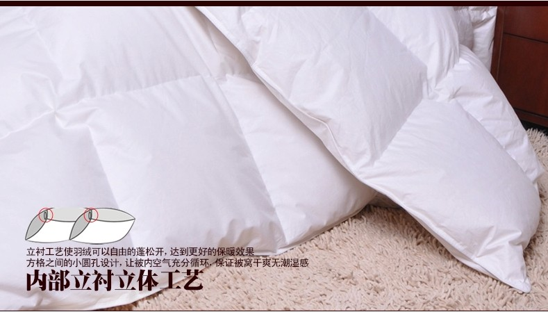 AU double size <font><b>180*200</b></font> cm duvet filled Goose feather & down 45 oz tog value 10.5 for winter 350 gsm factory price wholesale image