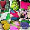 500 pcs Creeping Thyme bonsai or Blue ROCK CRESS plant - Perennial Ground cover flower flores ,Natural growth