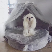 Dog bed  luxury dog kennels princess lovely cool pet cat beds sofa teddy house suede fabric lace