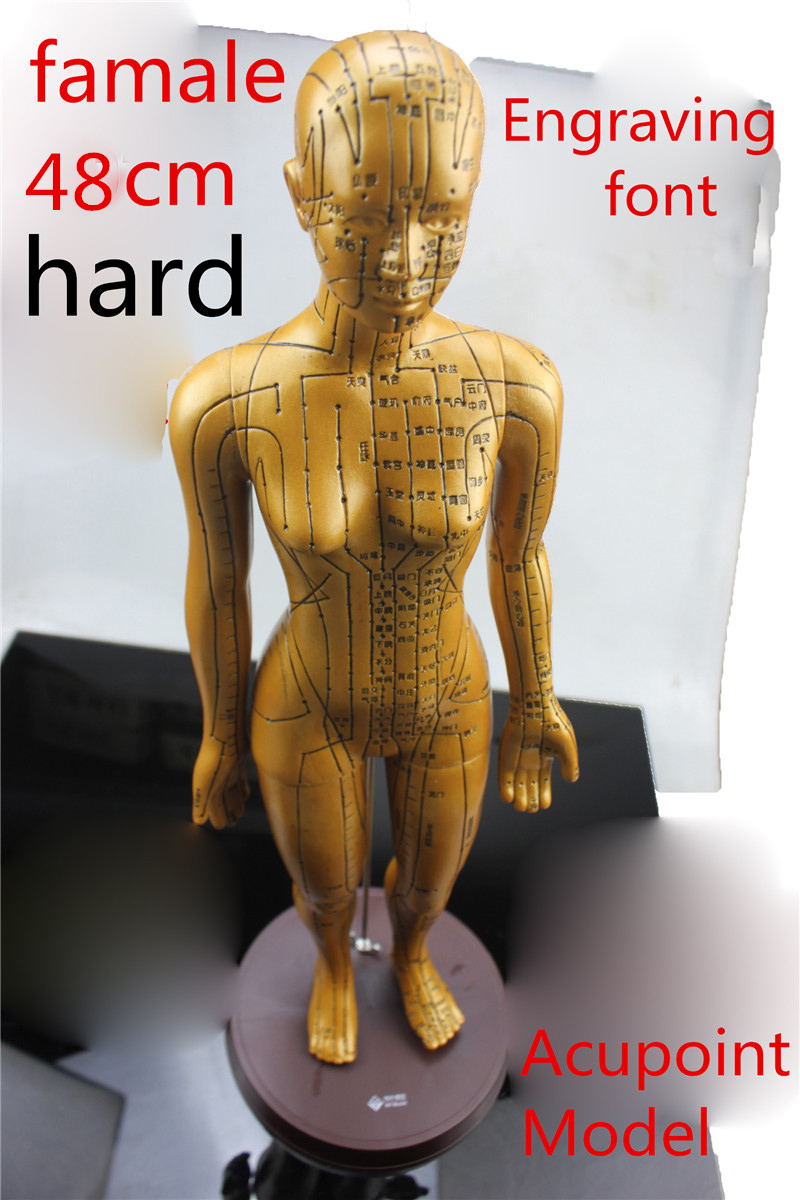 HD clear Electroplate Pure copper human body meridian acupuncture points hard model bronze acupuncture acupoints model