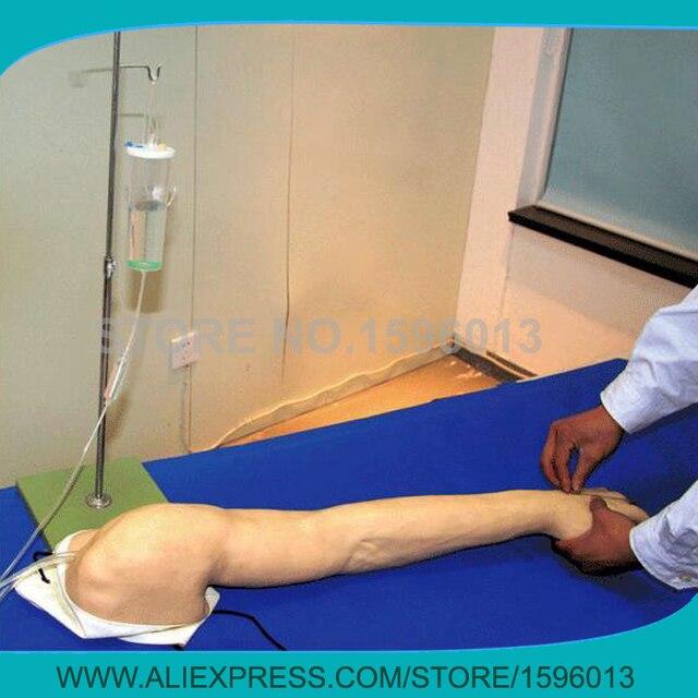 Volle multifunktionale Injektion Lehre Arm Modell, komplette ...