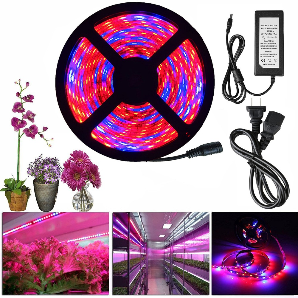 led grow light full spectrum dc 12v 5050 aquarium greenhouse plant growing light set adapter. Black Bedroom Furniture Sets. Home Design Ideas