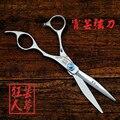 Профессиональный бренд волосы резка ножницы 6 дюймов 440C синий камень салон парикмахерских парикмахерская ножницы