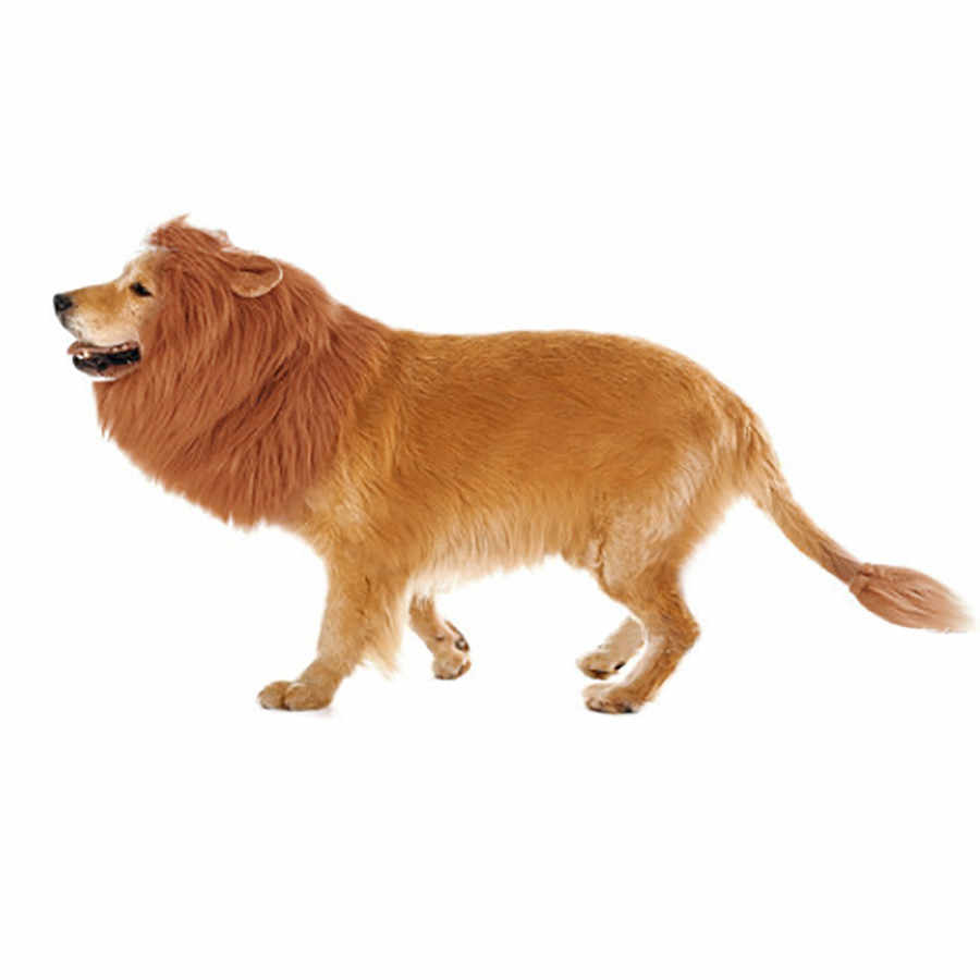 305373efc ... Lion Mane for Dog Costume With Gift Lion Tail Lion Wig for Dog #25 ...