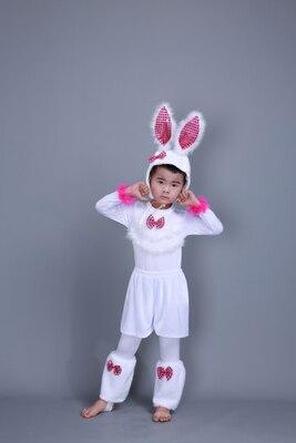 Детский костюм с милым кроликом платье для танцев платье для костюмированной вечеринки с кроликом для взрослых девочек 100-160 см(S-3XL - Цвет: boys long sleeve