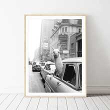 Llama in a taxi on Times Square Canvas Print and Poster Vintage llama Print New York City Photo Picture Wall Art Home Decor(China)