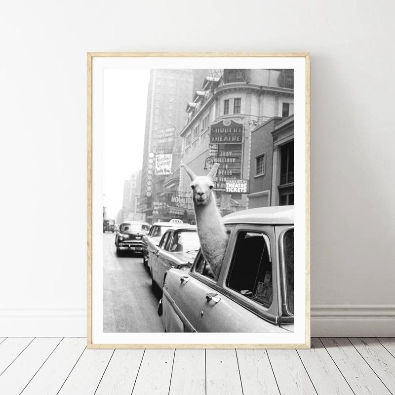 Llama in a taxi on Times Square Canvas Print and Poster Vintage llama Print <font><b>New</b></font> <font><b>York</b></font> <font><b>City</b></font> Photo Picture Wall Art Home Decor