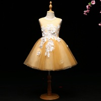 Luxury Ball Gown Flower Girl Dresses Wedding Gowns Floral Holy Communion Dress for Little Girls Lace Up Embroidery Party Dress