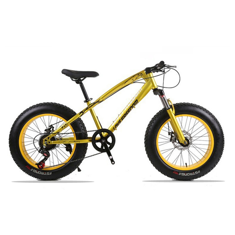 20X4.0 Mountain Bike Fat Bike Bicycle road bike 7/21 speed Front and Rear Mechanical Disc Brake Hard Frame Unisex Snow bike 2018 anima 27 5 carbon mountain bike with slx aluminium wheels 33 speed hydraulic disc brake 650b mtb bicycle