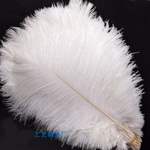 Wholesale! 100 PCS/a lot of beautiful white ostrich feathers 20 25 cm / 8 10 inches wedding celebration decoration